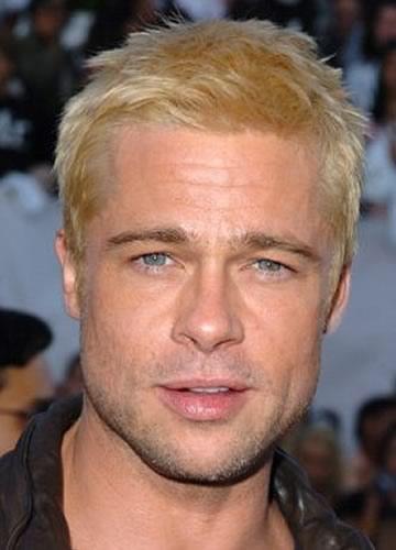 Brad Pitt in 2005